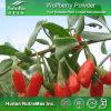 Polvo natural del 100% Wolfberry (nombre latino: Barbarum L. del Lycium)