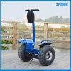 Fließender Übergang Personal Transport Vehicle Electric Scooter für Tourist Rent