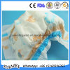 柔らかい心配のおむつの新しい布のOEMのための使い捨て可能なAdult&Babyのおむつすべてのサイズ