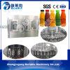 중국 플라스틱 병 차 음료/주스 음료 충전물 기계 공급자