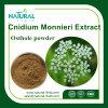 Osthole 20%, 35%, 50%60%, estratto di Cnidium Monnieri della polvere di 98%
