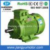 세륨 RoHS를 가진 Sale 최신 660V Ye3 Three-Phase Asynchronous AC Motor