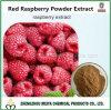 ボディービルおよび減量のためのラズベリーのケトンが付いている最もよい品質の赤いラズベリーの粉のエキス