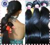 Горячие волосы бразильянина девственницы красотки 100% людские Unprocessed