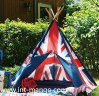 나무 기둥 국기와 함께 인도 Pentage 천막 텐트 (MW6015)