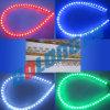 Luz flexible de la cinta del LED (luces de la Gran Muralla)