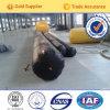 De ronde Plastic Opblaasbare RubberBallon van de Techniek
