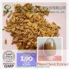 Qualitäts-natürliches organisches Fenchel-Startwert- für Zufallsgeneratorauszug-Puder