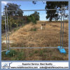Clôture de clôture provisoire de site de construction de bâtiments