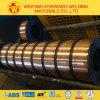 Газ СО2 Er70s-6 защищая провод заварки при вырезанный сердцевина из поток