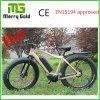 販売のための穴の縁48V 350Wの脂肪質のタイヤの電気バイクとの26 Alu