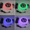 Colore che cambia l'indicatore luminoso di striscia del LED