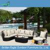 SGSのPEの藤の家具の屋外の余暇のソファー