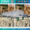 나무를 위한 기계를 껍질을 벗기는 로그 Debarker /Wood