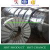 Bobine chaude d'acier inoxydable de Rollded (200)