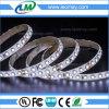 Tira constante popular de la luz 140LEDs de la corriente SMD 3014