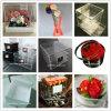 Fabrication professionnelle de cadre de luxe acrylique de fleur
