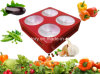 2015 più nuovo Red Blue Greenhouse 300W LED Grow Light COB