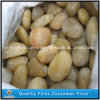 Natural Polished Yellow Pebbles Stone para o jardim de Paving