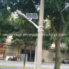 12W LED Solar Street Light e LED Solar Road Lamp