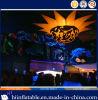 2015 het Hete stak Verkopen Opblaasbare Ster 009 voor de Decoratie van het Plafond voor Partij aan, Gebeurtenis, Tentoonstelling, Kerstmis, de Decoratie van het Festival