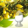 Natuurlijke Substantie van Normen 98% Cytisine voor Injectie