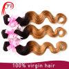 Het purpere Weefsel van het Menselijke Haar van Ombre van de Bundels van het Haar van het Haar Ombre Maagdelijke Braziliaanse
