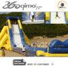 Slide gigante, ippopotamo Slide, Beach Slide con Safy Wall
