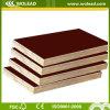 Alta qualidade Concrete Formwork (madeira compensada enfrentada película) (w15506)