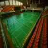 O revestimento interno/Badminton do PVC ostenta o assoalho