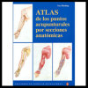 Atlas De Los Puntos Acupunturales Por Secciones Anatomicas V-12