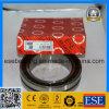 Rodamiento de rodillos cilíndrico de la fila doble (NN3020TN9)