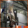 Gado Slaughteringhouse de China da chacina da máquina de casca de Hydraumatic