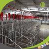 최신 판매 임신 기간 축사/모든 돼지 농장을%s 적당한 개별적인 축사