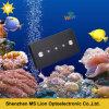 luz usada do aquário do diodo emissor de luz do recife coral da ESPIGA da luz do aquário do diodo emissor de luz 169W para o recife cheio do diodo emissor de luz do espetro do uso marinho