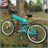Bike горы хорошего качества фабрики 250W Китая электрический для спорта