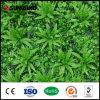 Planta verde artificial de interior plástica barata de la pared de la hoja