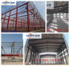 Bestiame Machinery in Chicken House con Design e Construction