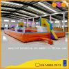 Juego inflable de los deportes del balompié y del baloncesto del teatro de interior anaranjado (AQ1801)