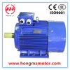 courant alternatif Three Phase Induction Motor de 45kw Cast Iron
