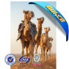 Highquality original New Design 3D Picture Horse