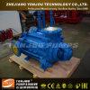 Pompe à eau diesel d'irrigation agricole de Yonjou