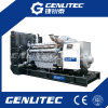 Groupe électrogène diesel BRITANNIQUE célèbre de l'engine 800kw/1000kVA Genset