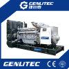 Groupe électrogène diesel BRITANNIQUE de l'engine 800kw/1000kVA de Perkins