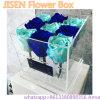 جميل شفّافة أكريليكيّ زهرة صندوق عادة - يجعل أكريليكيّ عرض [روس] صندوق