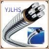 Le câble blindé auto-bloqueur d'alliage d'aluminium, XLPE a isolé