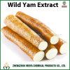 Health Care Ingredient Wild Yam Powder Extract with Diosgenine 6% - 20% HPLC