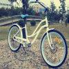 26inch 바닷가 함 전기 자전거 Rseb-1215