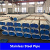 SUS 316/316L Pipe van Stainless in Seamless