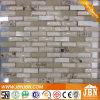 La resina y el mosaico de Shell, aluminio Mezcla de mosaico de mosaico de vidrio (M855098)